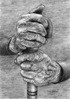 Hands by Sam Zhang 06-29-2014 by samxinzhang