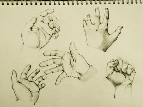 Hand illustrations by jahle