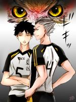 Bokuto x akaashi2 by misserables