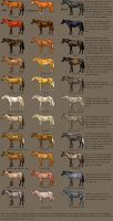 horse Color Chart by MagicWindsStables