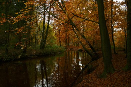 Indian summer river by sahk99