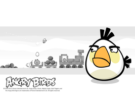 Angry Birds White Bird Wallpaper by Jeremiekent13