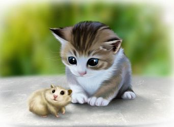 chaton by clefchan