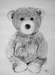 Teddy by Hnser