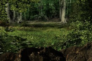 Premade Background 159 by FairieGoodMother