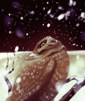 First Snow by Followthepaws