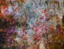 Canvas Texture red by SolStock