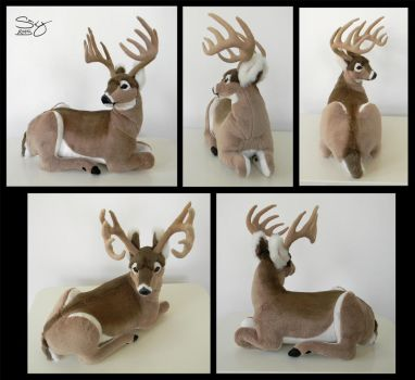 Whitetail Buck by SarityCreations