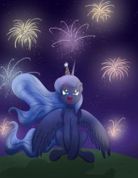 New Years Fireworks by Bratzoid