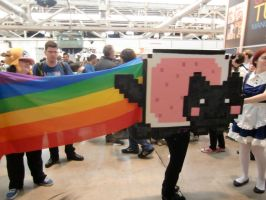 Nyan Cat Cosplay Lolwut by Tokkori
