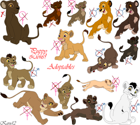 [CLOSED] Cubs Lions Adoptables by Karu12