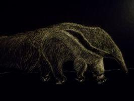 Anteater by WhaleArtist