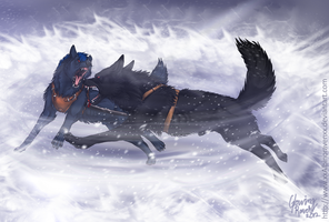 Rising winter storm by casualGEE