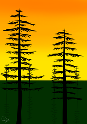 Trees at sunset by Wolf--Prime