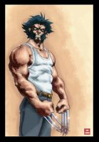 Wolverie by Tincan, colored by Absalom7