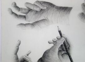 Hand Study by 130Dk