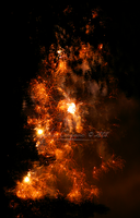 - Wildfire - by sidh09