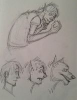 Anthony Transformation Sketches by TangerineVampire