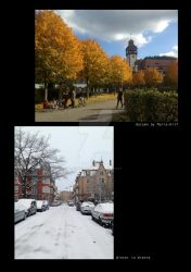 Freiburg: Autumn and Winter by experiment313