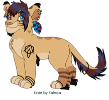 Custom Design for XKSilver by Kainaa