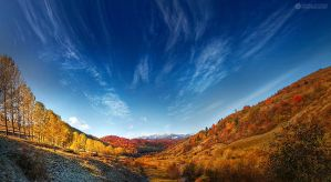colorful autumn by adypetrisor