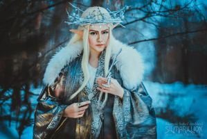 Thranduil and his Wife 08 by Megane-Saiko