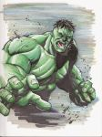 The Hulk by 0boywonder0