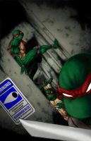 TMNT RED by 1314
