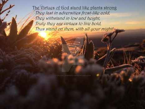 About the Virtues of God by Truth-lover3712