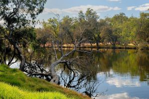 Bassendean Banks by hansgphotography