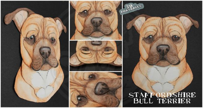 3D - Portraits: Staffordshire Bull Terrier by SaQe