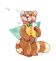 Red Panda by owlburrow