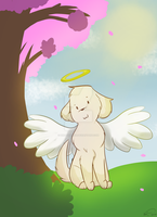 Chica Angel Doge by PikatsuTran