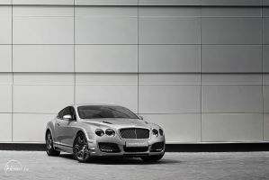 Bentley 6 by adisson-photography