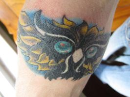 Owl Cover Up by SputnikJr
