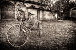 Old Bicycle by Piddling
