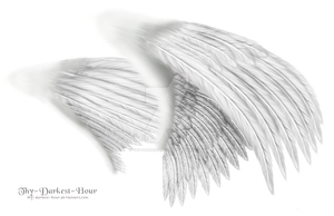 Dual White Wings - LARGE PSD by Thy-Darkest-Hour