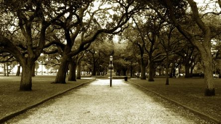 Charleston by ElaineLoree