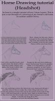Horse Head Drawing Tutorial by WB-Equine-Art
