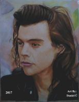 Harry Styles (2017) by nielopena