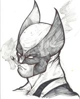 wolverine by theredmonster419