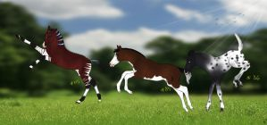 Catch a HSH foal for free! - RESULTS :D by SilviasDesires