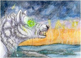 ACEO: Shadow of the wolves by SaQe
