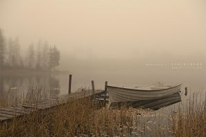 Fog by Stridsberg