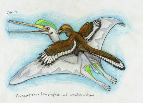 Draw Dinovember day 12 ~ Archaeopteryx by Pterosaur-Freak