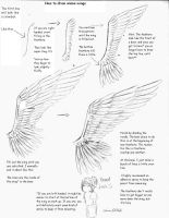 Anime Wing Tutorial by DWolfe06