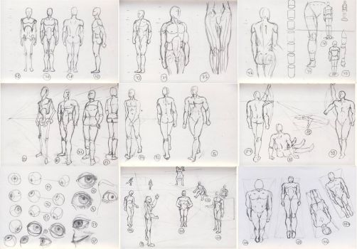1000 anatomy sketches challenge: 69 - 107 by Xrxlxs