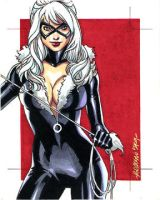 Black Cat Sketch by ryanorosco
