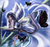 Night Butterflies by Mami02