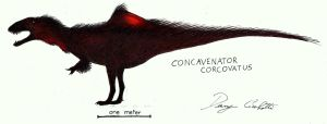 Concavenator by Dennonyx